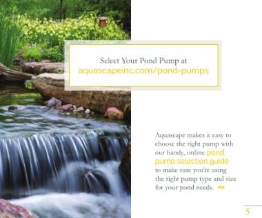 Page 5 - How to Keep Pond Water Clean and Healthy