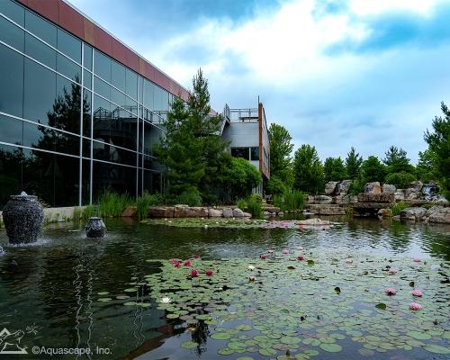 Aqualand Home