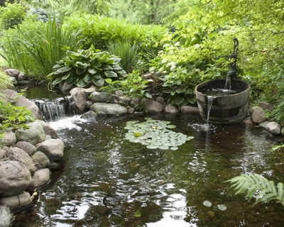 Aquascape-Ecosystem-Pond-2