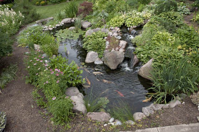 An overhead view of the main pond reveals the walking path, stone bench, hostas, perennials, and more.
