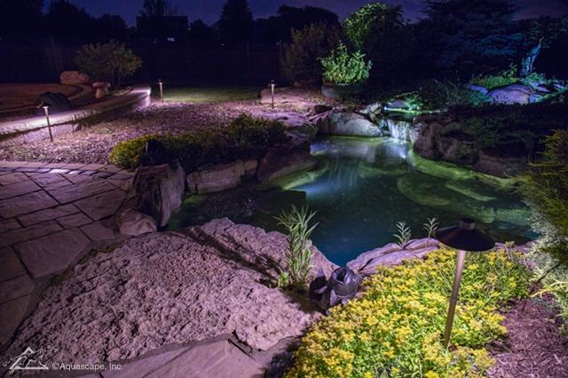 Five Ways To Enhance Your Pond Aquascape Inc