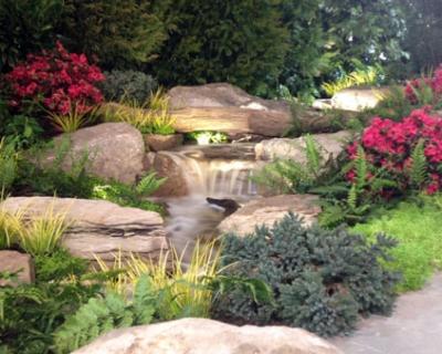 7 Beautiful Backyard Waterfall Ideas