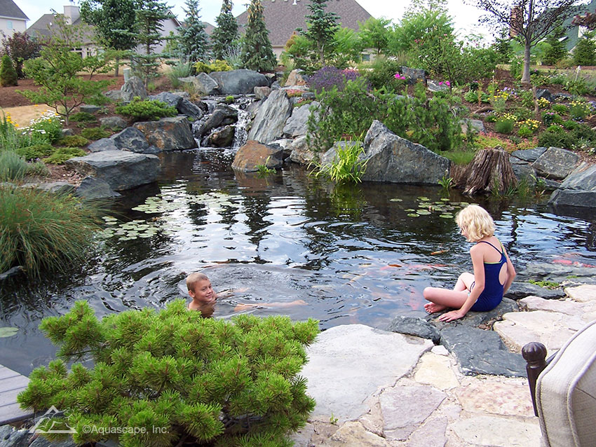 Growing up around a pond aquascape inc for Koi pond to swimming pool