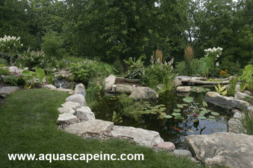 Aquascape Backyard Transformation with Pond