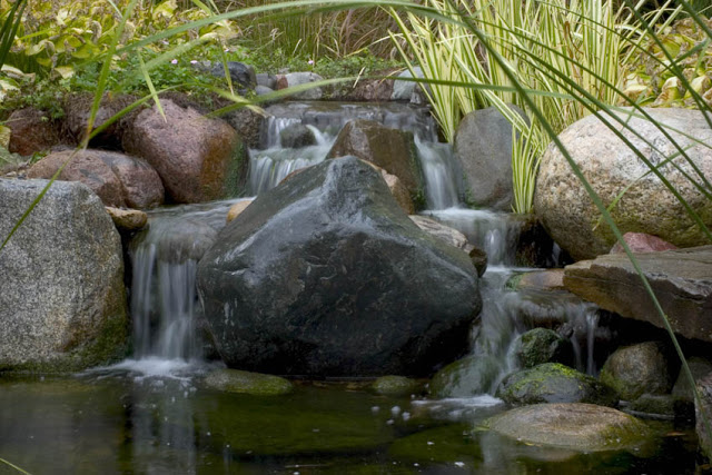 Moss will thrive on the cool surface of rocks surrounding a gentle waterfall such as this one.