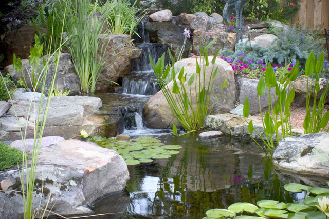 Small Ponds Pack A Punch Aquascape Inc