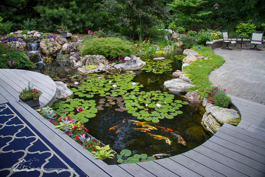 Pond with Cantilever Deck