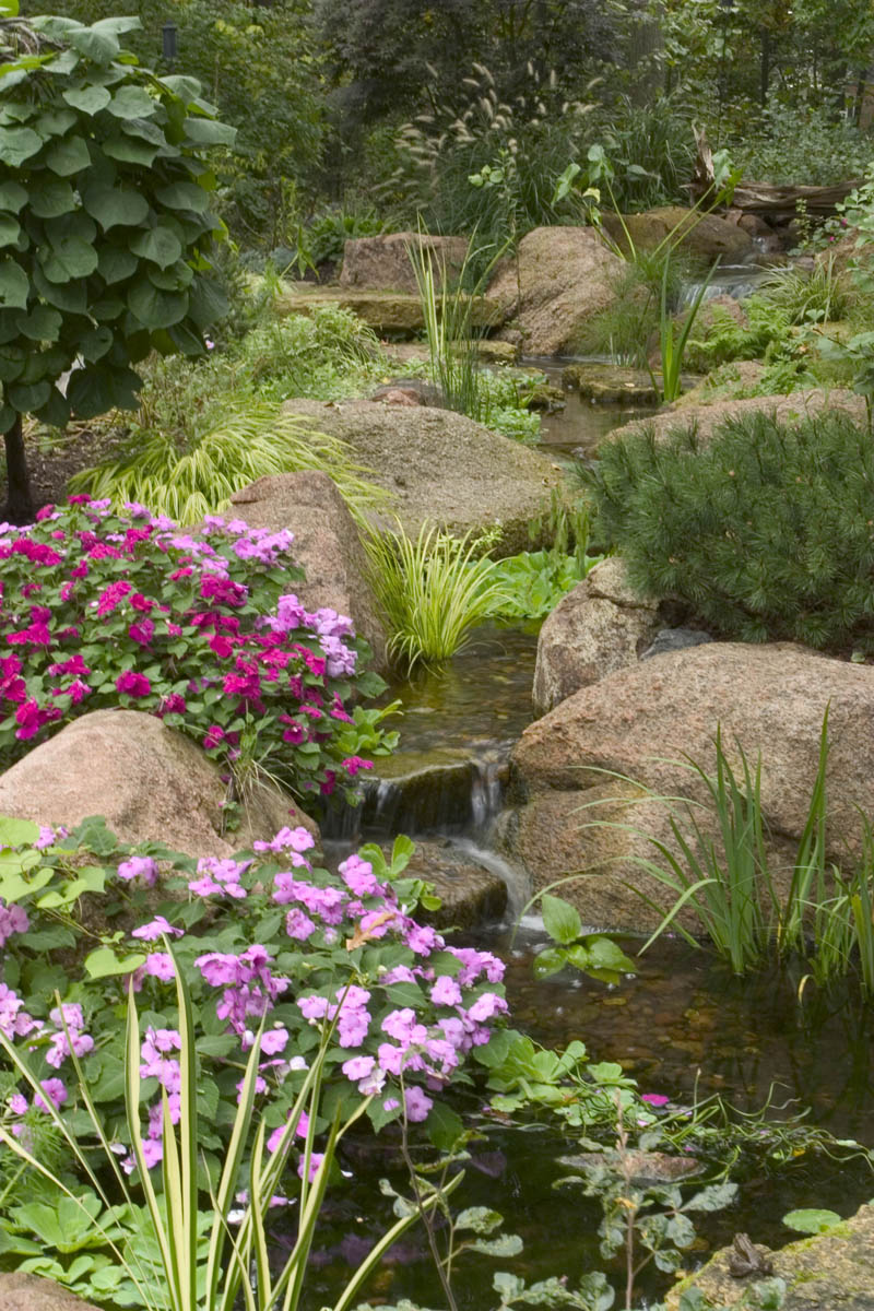 Landscape edging ideas for water features water gardens for Garden pond edging