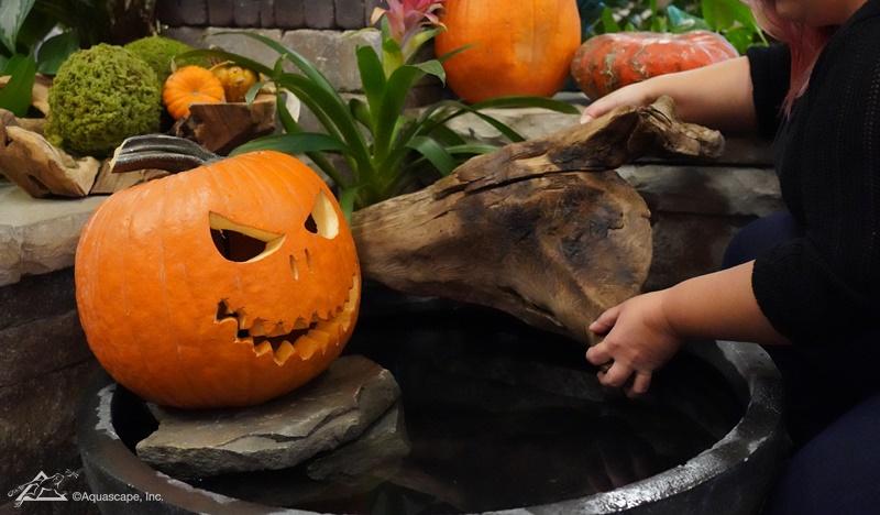How to Make a Halloween Pumpkin Fountain
