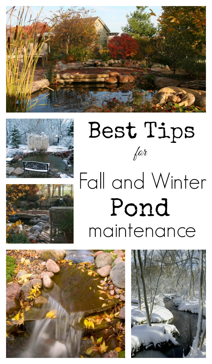Fall and Winter Pond Maintenance - Collage