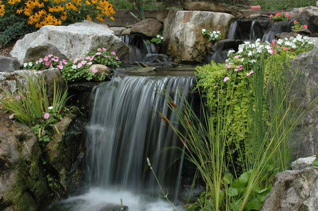 Flowers and plants soften the edges of large stone and help to naturalize the waterfall.