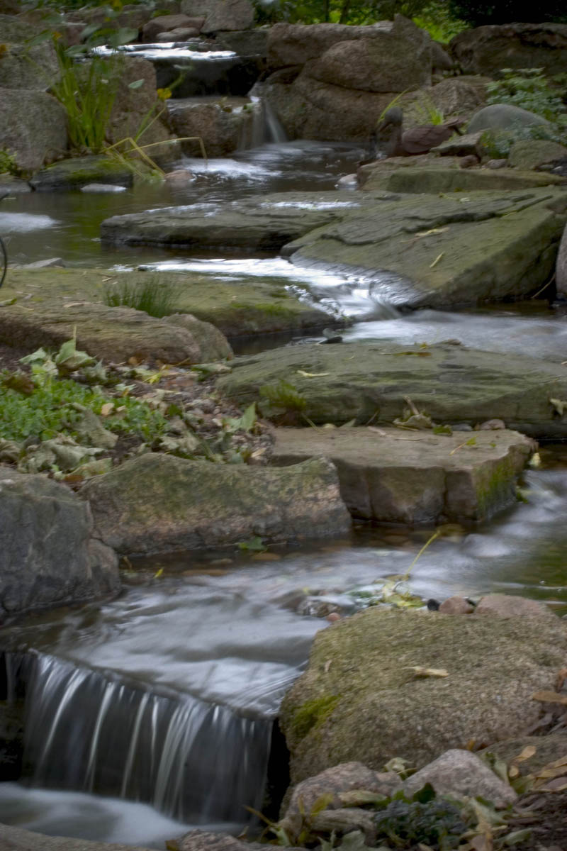 Edging - Outcroppings in a Stream