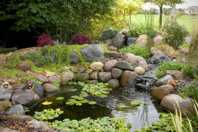 A waterfall and winding stream spill gently into this small pond.