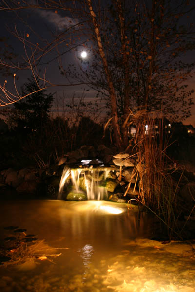 Moonlit Pond