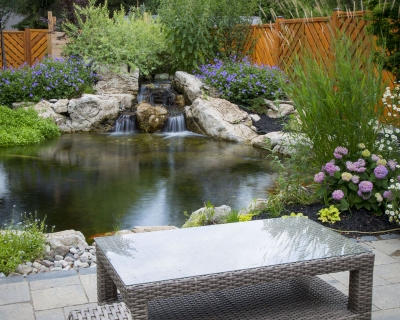 Tips For A Healthy Summertime Pond
