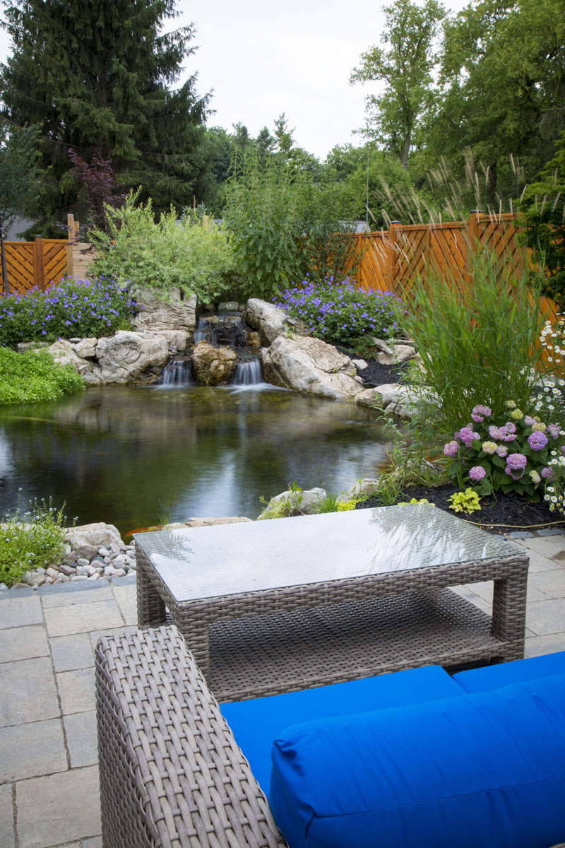 Backyard Pond by Patio in Toronto