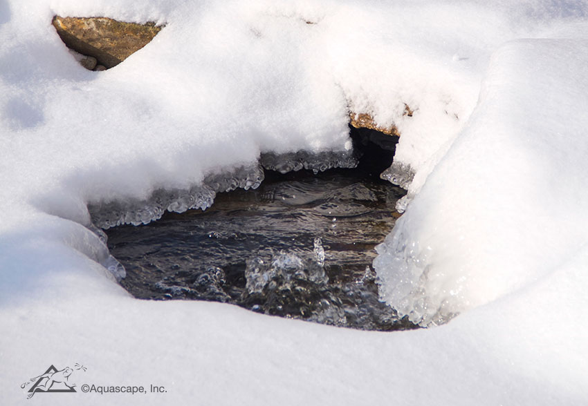 Caring for Your Pond During Winter - Aquascape, Inc.