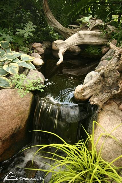 Aquascape Waterfall
