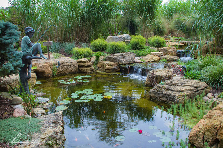 How a chicago suburbanite transformed their backyard with for Outdoor fish pond care