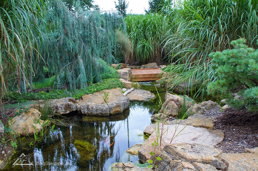 A wooden bridge invites you to explore a backyard water feature further.