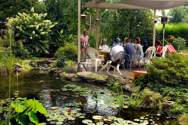 Outdoor Dining by the Pond