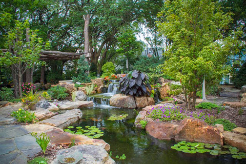 Taking center stage is a beautiful ecosystem fish pond with waterlilies and lush landscape.