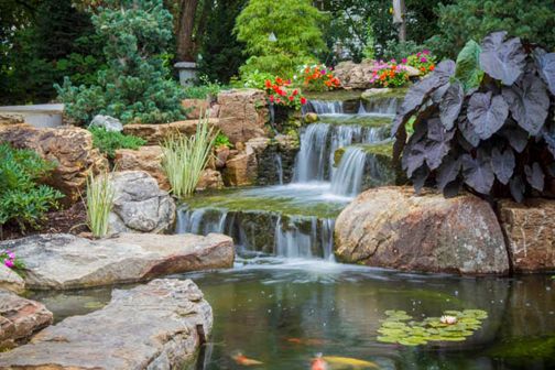 A stone bridge traverses the pond, beckoning visitors to explore more of this backyard paradise.