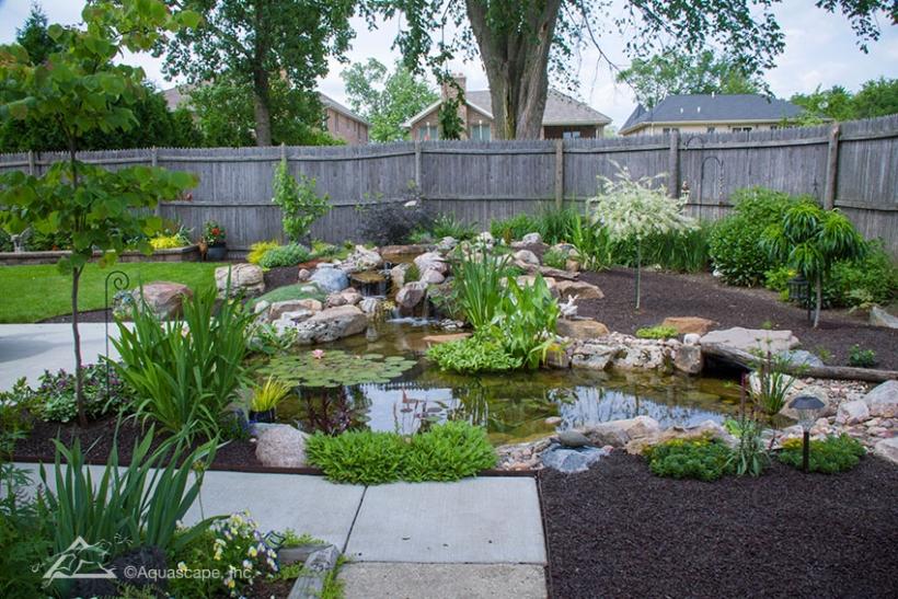 medium water garden and pond kit