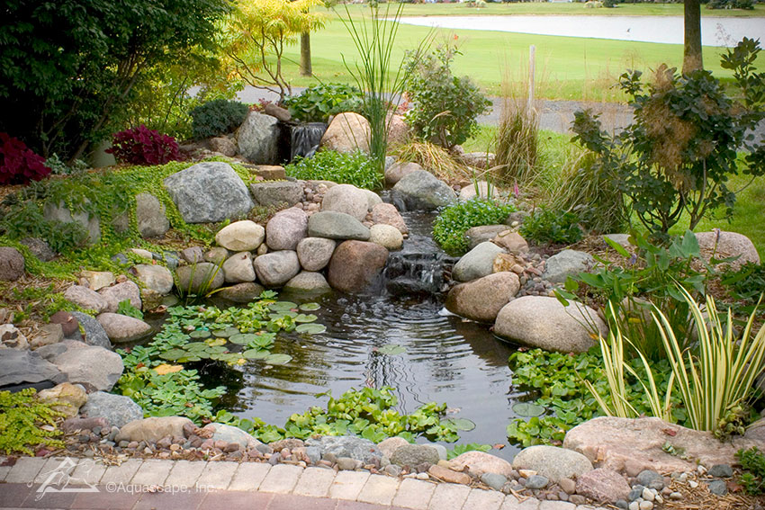 Water Garden Ecosystem Ponds Backyard Pond Designs