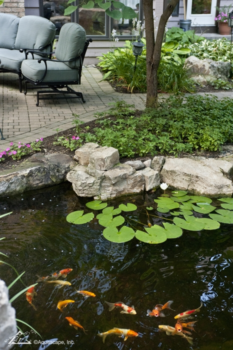 Beautiful backyards be inspired aquascape inc for Koi ponds near me