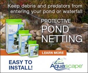 Protective Pond Netting Ad 336x280
