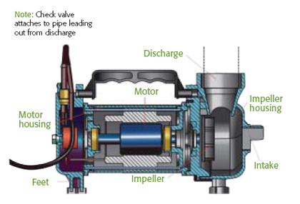 Pump Up Your Knowledge Aquascape Inc, Pool Pump Motor Storage