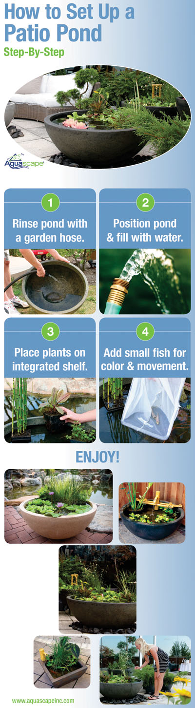 Patio Pond Set-Up Infographic