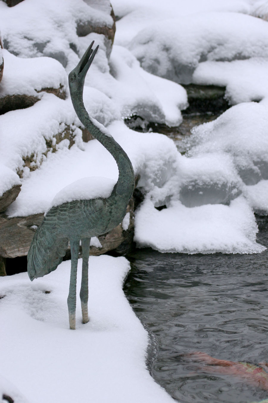 Winter Pond -Winter Fish Care