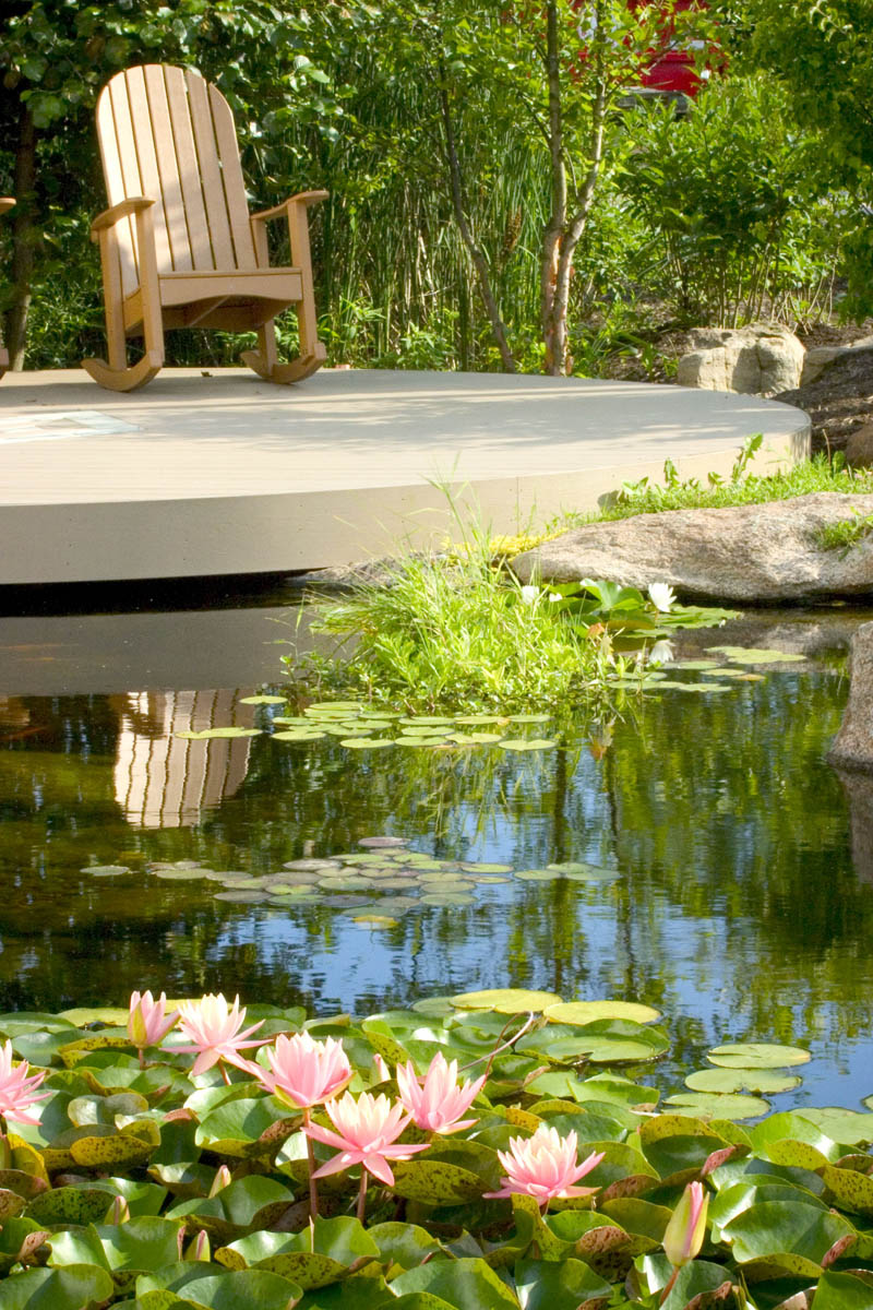 Help Your Pond Beat the Summer Heat - Aquascape, Inc.