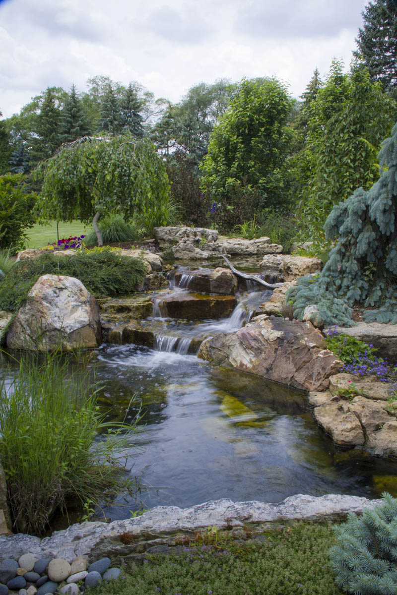 Ultimate Backyard Oasis with Pond and Waterfall