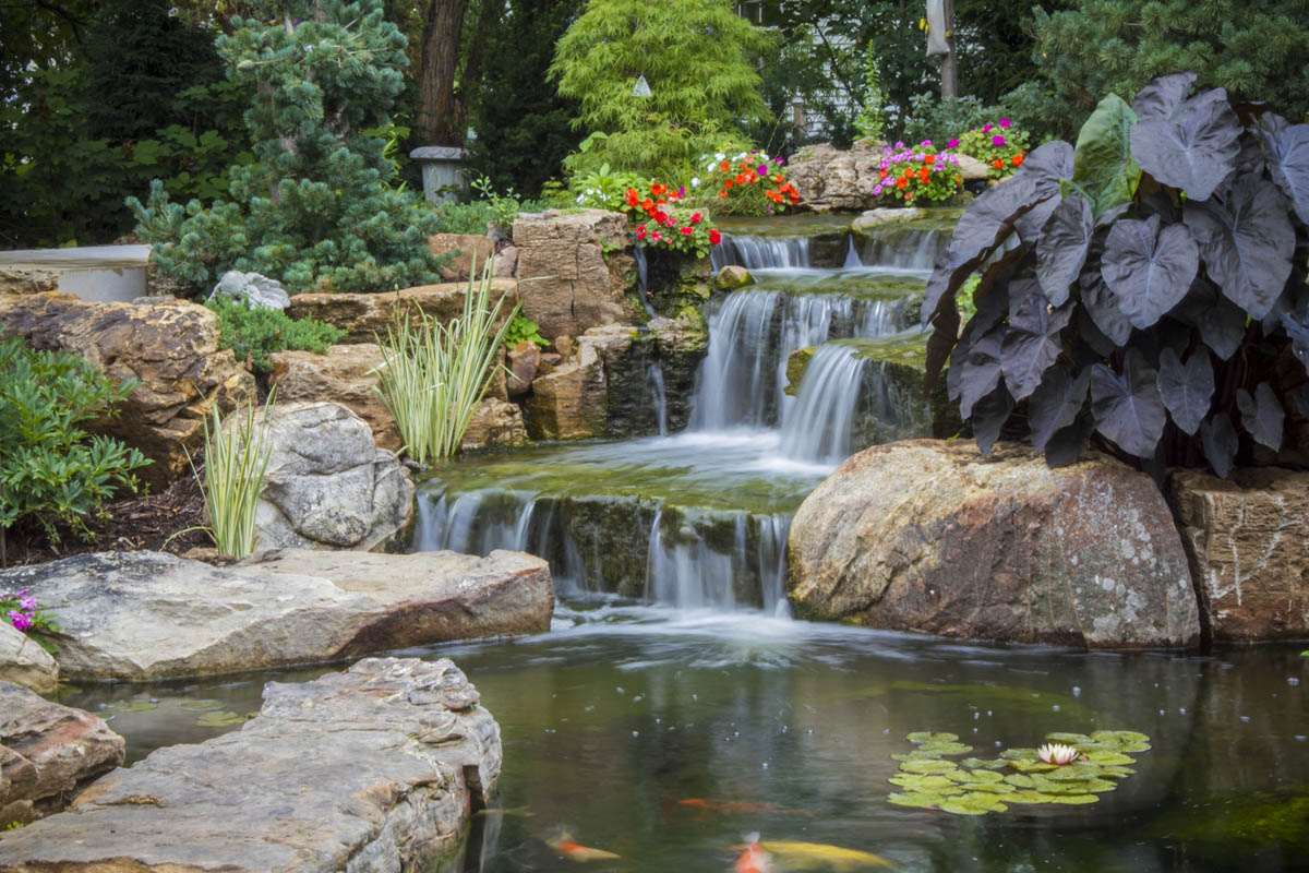 The healing power of water features aquascape inc for Backyard ponds and water features