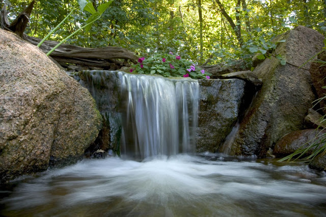 Do you have a wooded backyard? Don't sweat fitting a waterfall into the landscape. Let the stream wind around the trees before emptying into a crystal clear pond.
