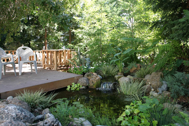 A shady spot on the deck provides cool relief on hot summer days, while the pond helps to lower the temperature.