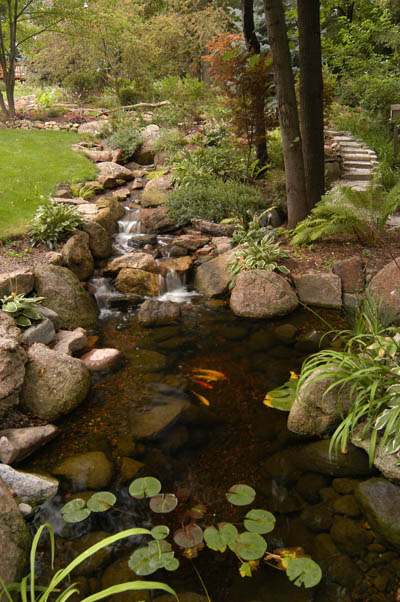 Gravel Bottom Ecosystem Pond