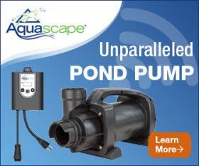 Aquascape SLD Adjustable Flow Pond Pumps