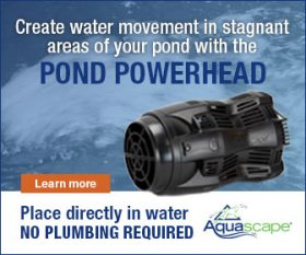 Aquascape Submersible Pond Pump