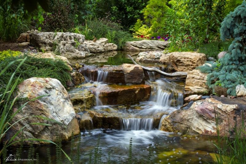 Backyard Waterfall Cascading into Koi Pond