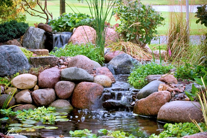 Small backyard pond with waterfall