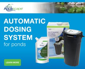 Automatic Dosing System for Ponds - Water Treatments