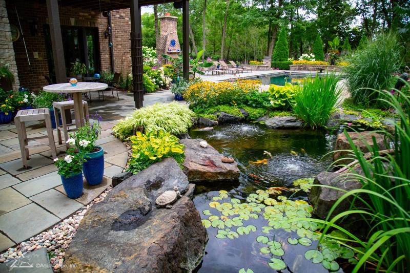 Pond Plantings - Marginals and Waterlilies