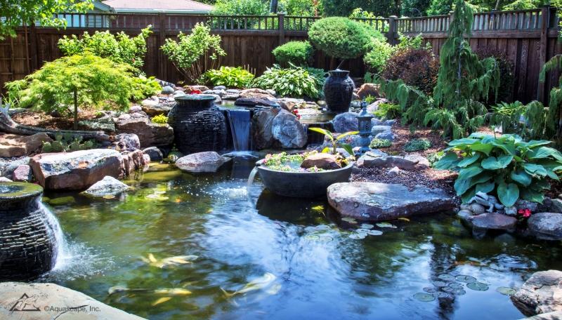 Creative Pond Edging with Rocks