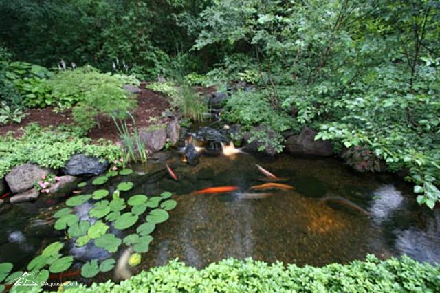 Gravel on the bottom of an ecosystem koi pond