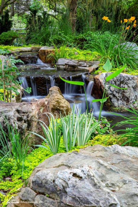 Waterfall and Pond with Aquatic Plantings