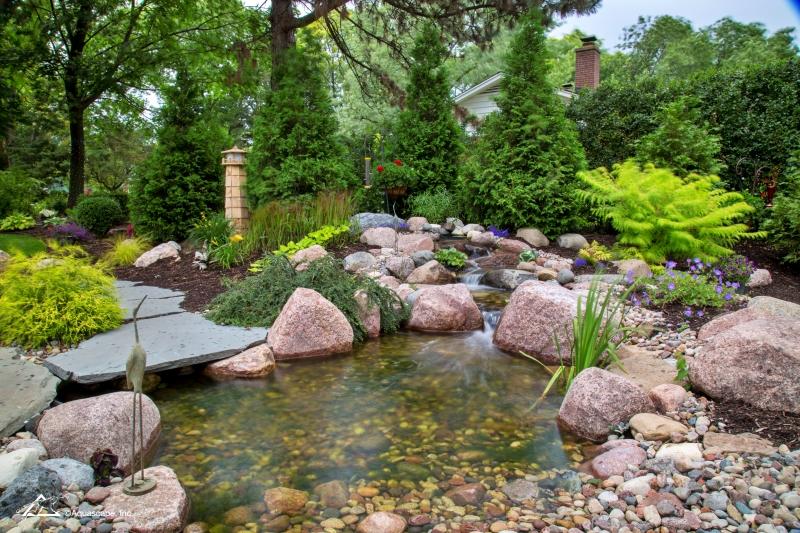 Backyard Ecosystem Pond with Waterfall